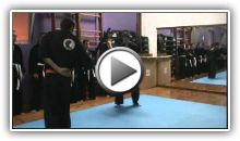 Close Quarter Combat & Grappling - Prof. Pinto